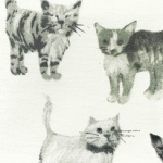 Cats: Designer fabric will collection of black & white hand drawn cats, printed on white cotton.